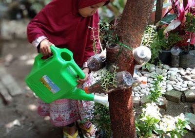 Hari Pohon Sedunia 3
